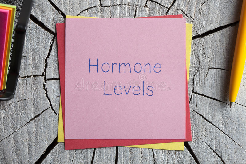 Hormone Levels written on a note royalty free stock photos