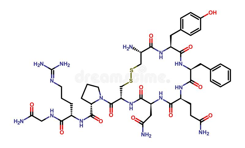 Hormone vasopressin stock illustration