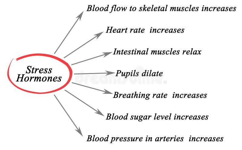 Hormones du stress illustration de vecteur