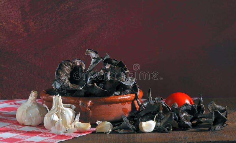 Horn Of Plenty. Edible mushroom, Trumpet of death, Craterellus cornucopioides, Costa Brava, Girona, Spain, Europe stock image