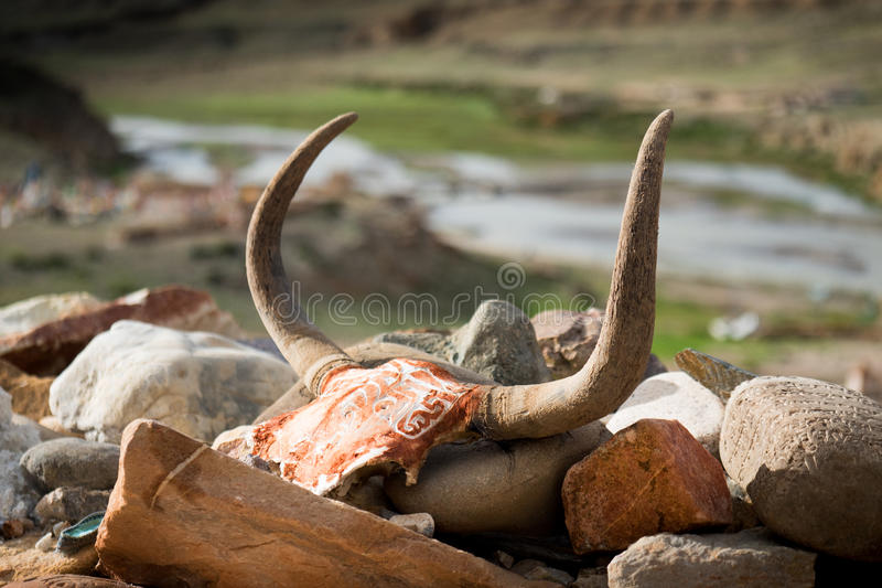 Horn and valley Tibet. Kailash Yantra.lv 2016 TIBET stock photography