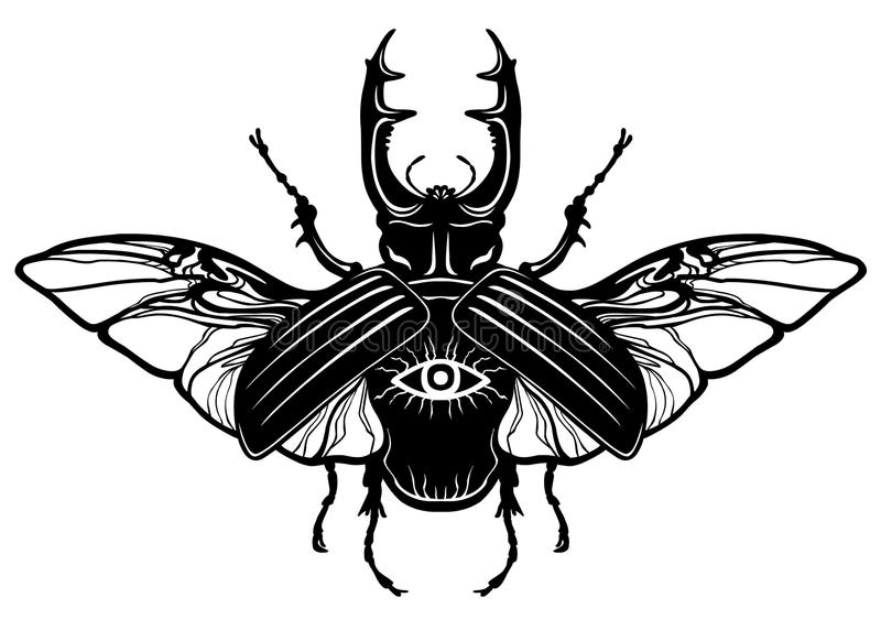 Horned bug. The black linear drawing isolated on a white background. Vector illustration royalty free illustration