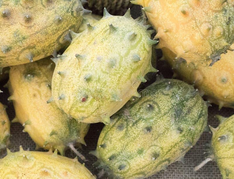 Horned melon eller kiwanos är spetsiga men läckra att äta arkivbilder