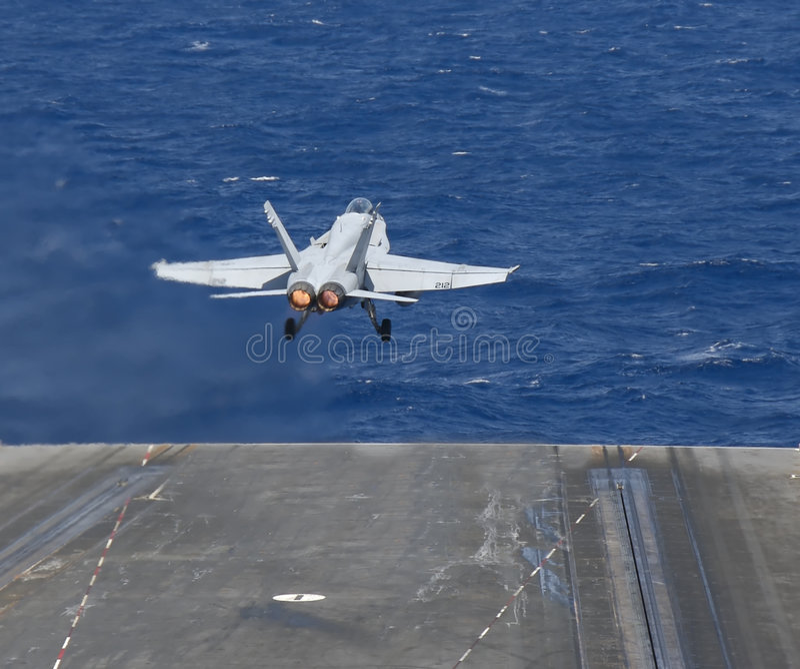 Hornet Taking Flight royalty free stock photos