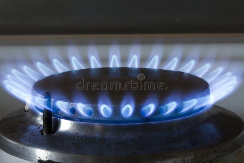 Hornilla de la estufa de gas imagen de archivo imagen de - Estufa calor azul ...