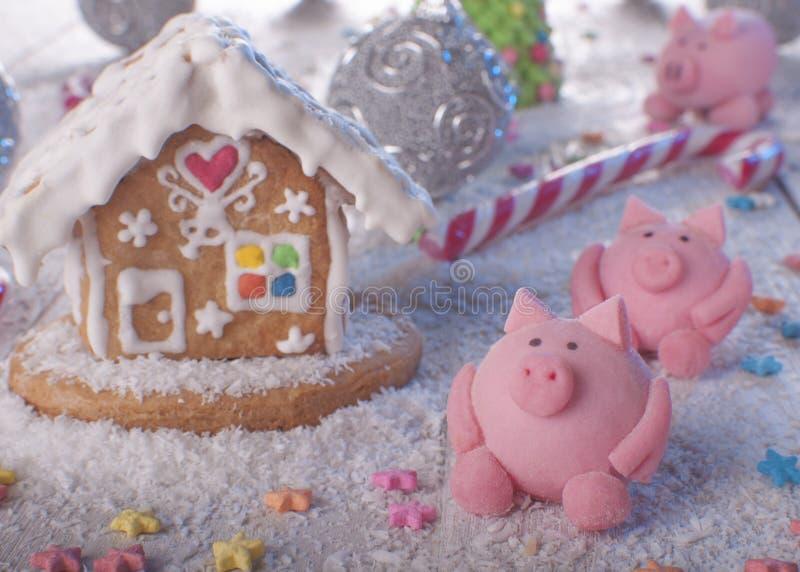 Horno de vacaciones Año del cerdo imagen de archivo libre de regalías