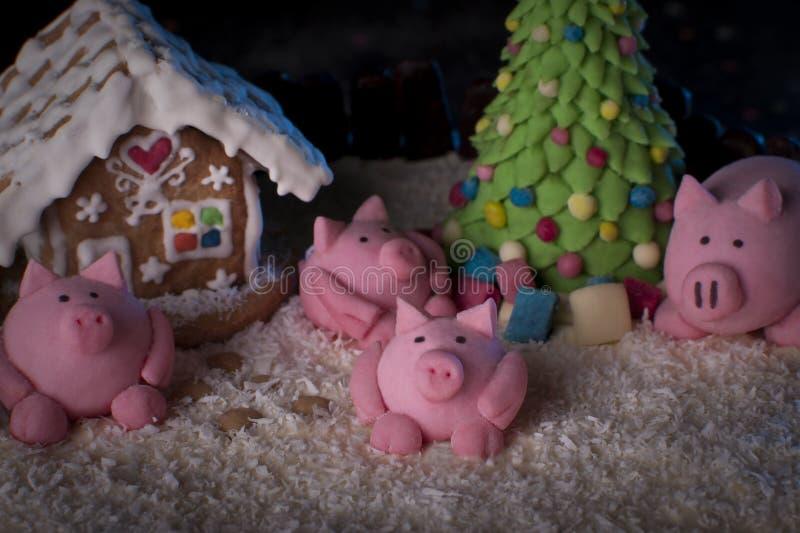 Horno de vacaciones Año del cerdo fotografía de archivo