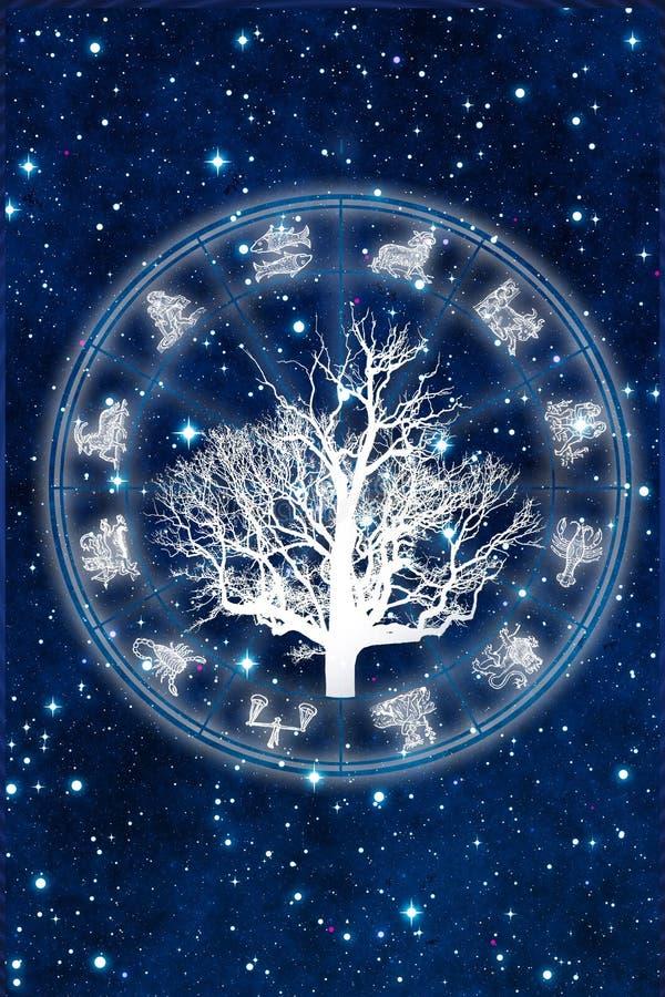 Horoscoop met boom van de tekens van de het levensdierenriem over sterrige Heelalachtergrond zoals astrologieconcept stock illustratie
