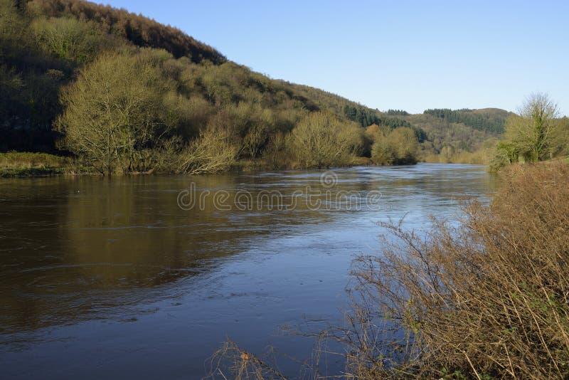 Horqueta del río en el apogeo fotografía de archivo