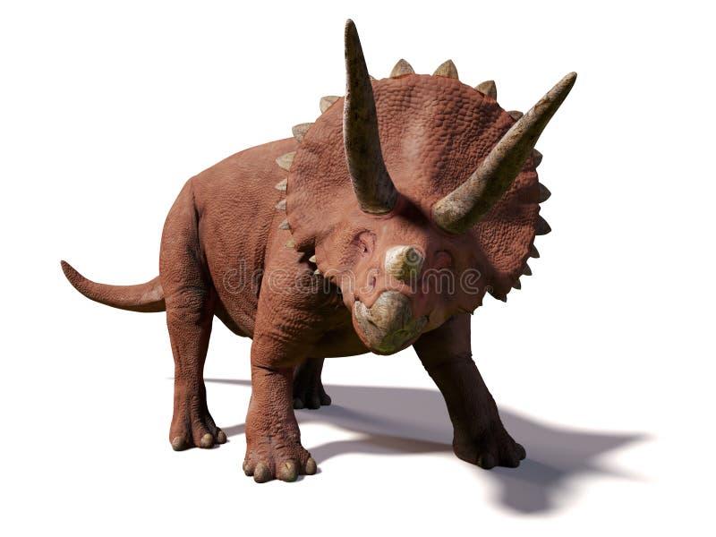 Horridus del Triceratops, vivo entre hace 66 y 68 millones de años de ejemplo 3d aislado en el fondo blanco stock de ilustración