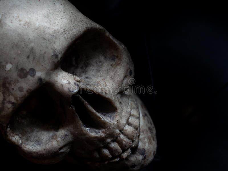 Horror del cráneo imagen de archivo libre de regalías