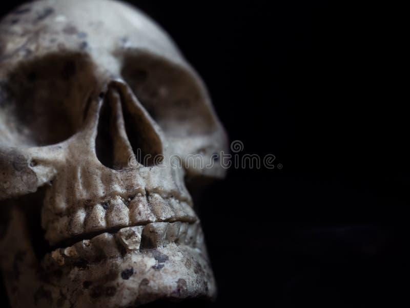 Horror do crânio foto de stock