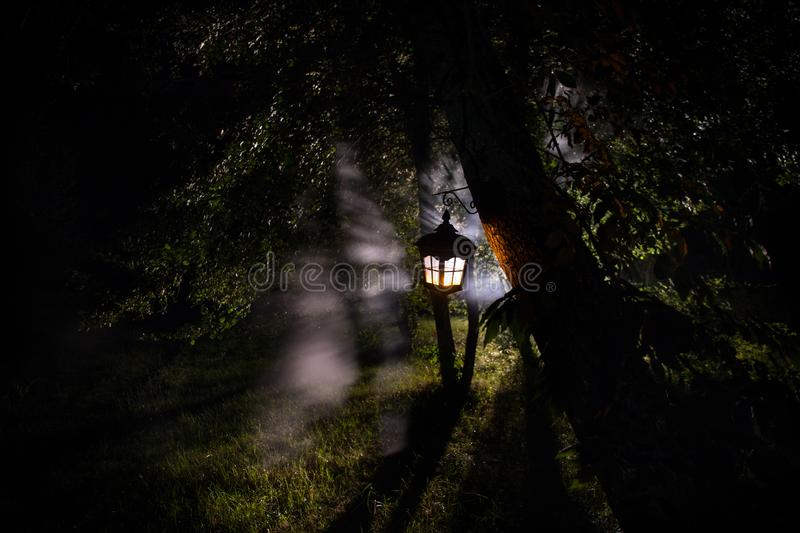 Horror Halloween concept. Burning old oil lamp in forest at night. Night scenery of a nightmare scene. Selective focus royalty free stock images