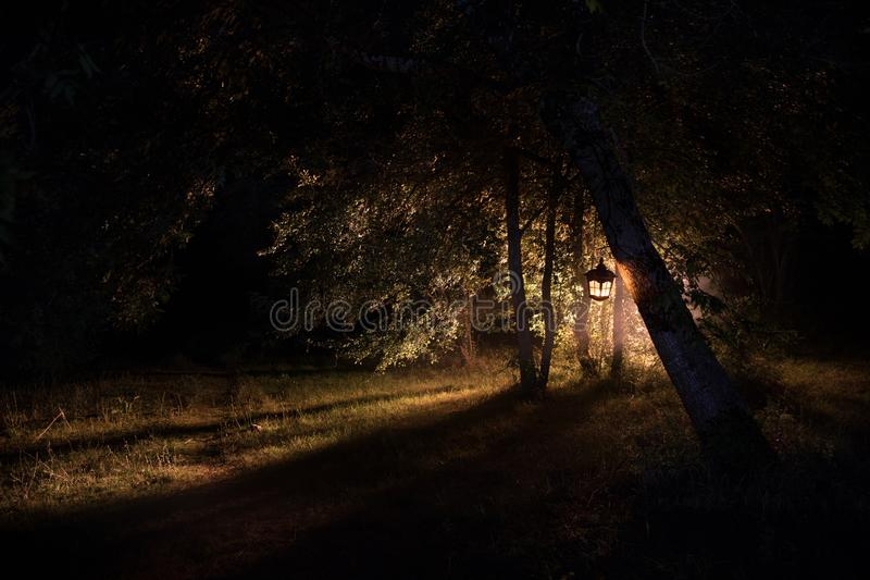Horror Halloween concept. Burning old oil lamp in forest at night. Night scenery of a nightmare scene. Selective focus royalty free stock image