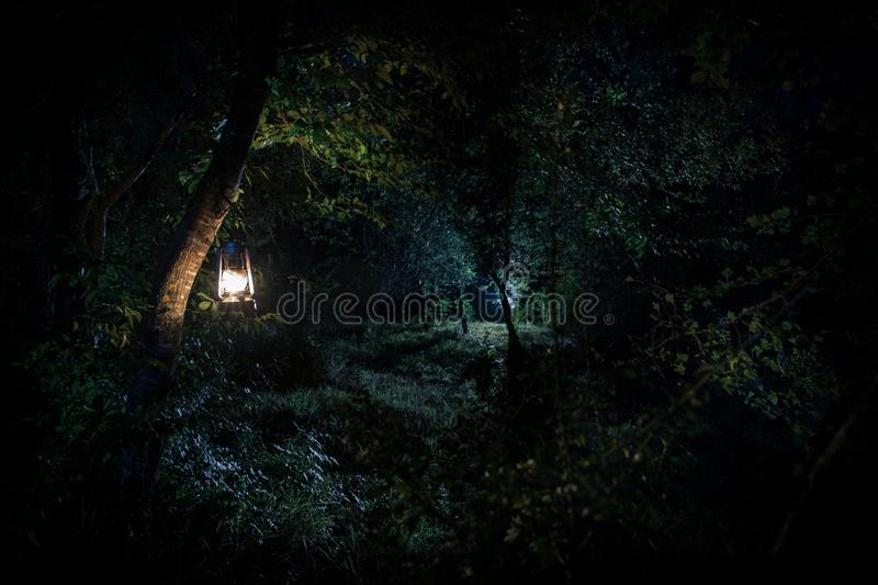 Horror Halloween concept. Burning old oil lamp in forest at night. Night scenery of a nightmare scene. Selective focus stock photos