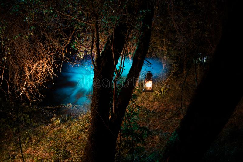 Horror Halloween concept. Burning old oil lamp in forest at night. Night scenery of a nightmare scene. Selective focus stock photo