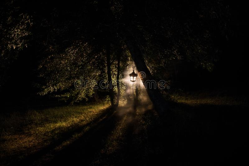 Horror Halloween concept. Burning old oil lamp in forest at night. Night scenery of a nightmare scene. Selective focus stock image