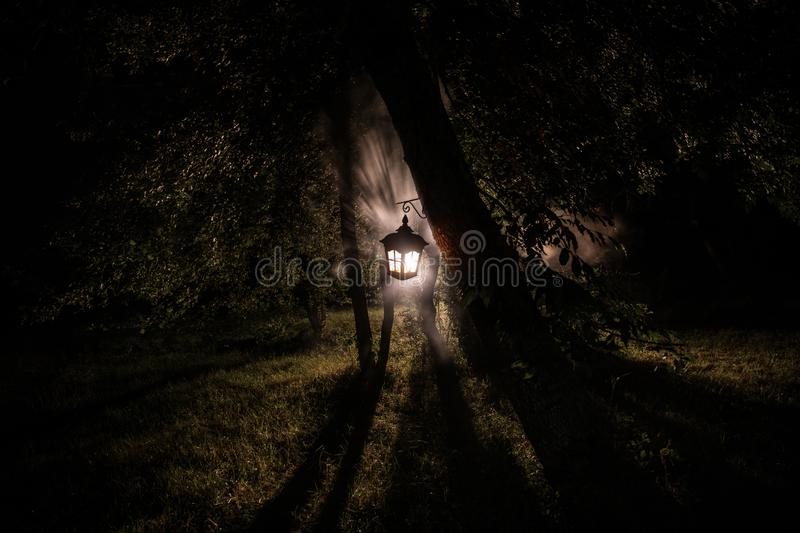 Horror Halloween concept. Burning old oil lamp in forest at night. Night scenery of a nightmare scene. Selective royalty free stock photo
