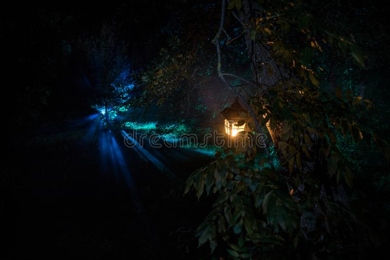 Horror Halloween concept. Burning old oil lamp in forest at night. Night scenery of a nightmare scene. Selective focus royalty free stock photography