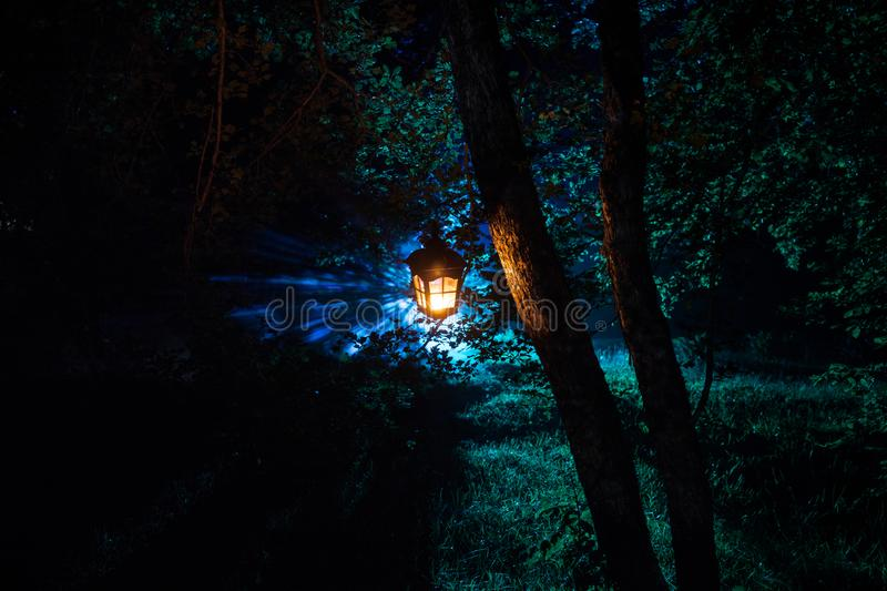 Horror Halloween concept. Burning old oil lamp in forest at night. Night scenery of a nightmare scene. Selective focus stock photography