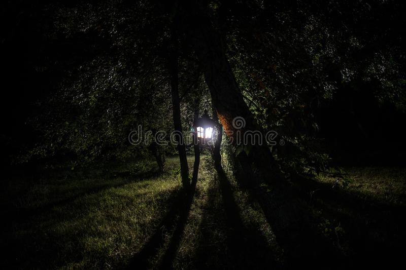 Horror Halloween concept. Burning old oil lamp in forest at night. Night scenery of a nightmare scene. Selective focus royalty free stock photos