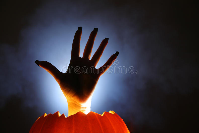 Horror hand. Human hand raising from pumpkin royalty free stock images