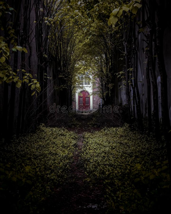 Horror house in forrest in Gouda. Horror house in forrest Gouda. Dark wild nature and in the middle a red door royalty free stock images