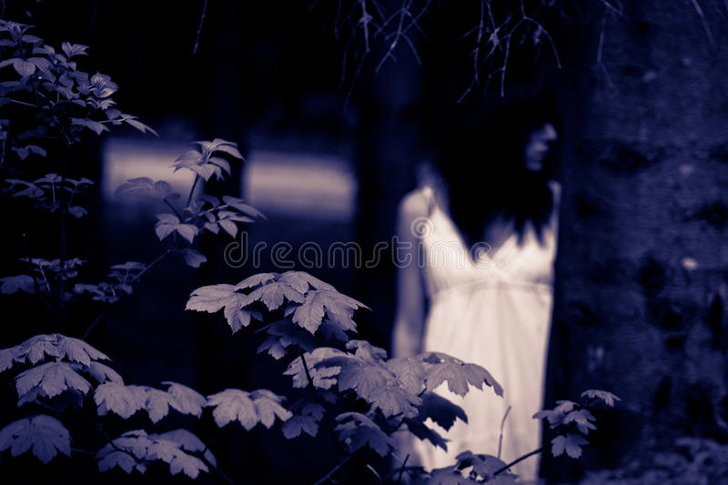 Horror scary woman stock photography