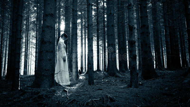 Horror scene. Woman with long black hair in white dress in the spooky dark forest stock photography