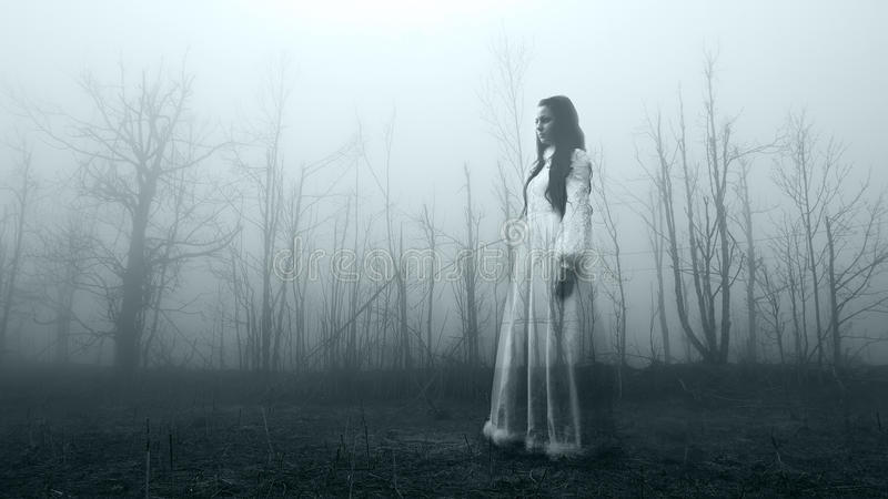 Horror scene of a scary woman. In the misty dark forest royalty free stock photography