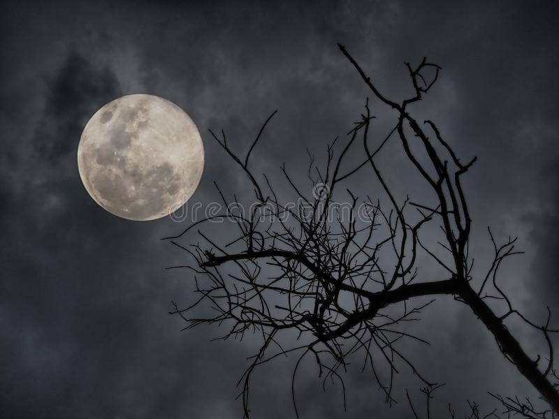 Horrornacht lizenzfreie stockfotografie