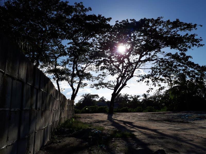 Hors de l'ombre, munshiganj Bangladesh photographie stock libre de droits