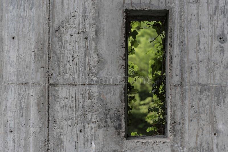 Hors de la fenêtre photos stock