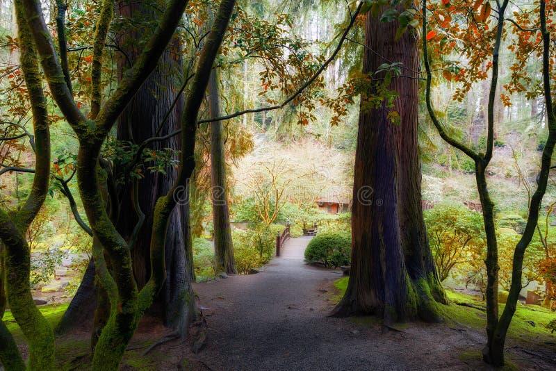 Hors des bois dans le jardin japonais Orégon de Portland images libres de droits