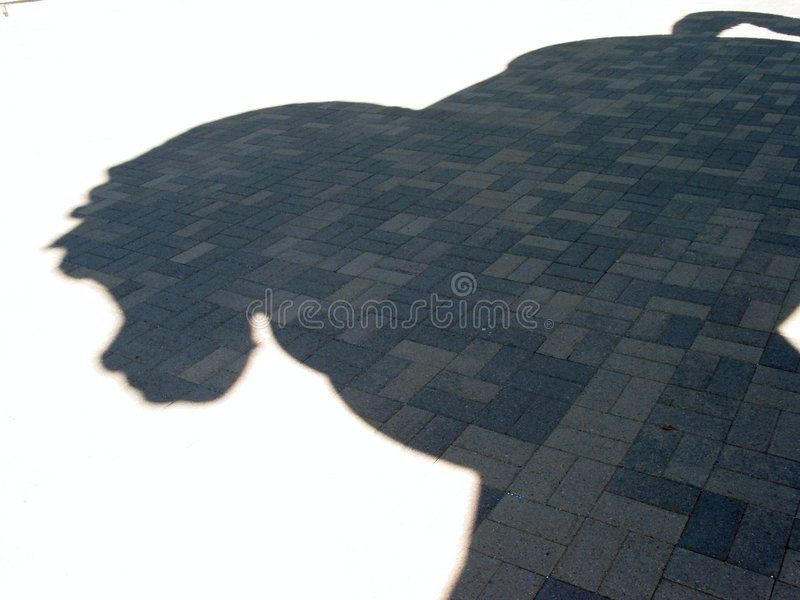 Download Horse's Shadow stock photo. Image of devinci, garden, horse - 11046