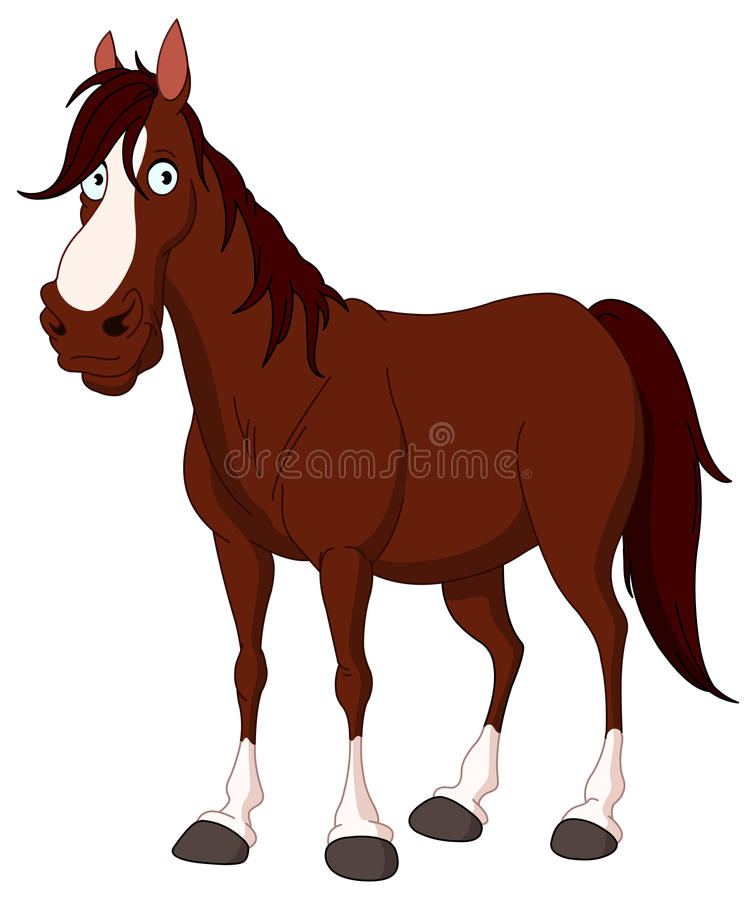 Horse. Illustration of Handsome brown and white horse