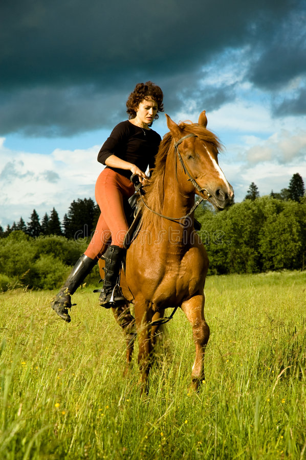 Free Horse Royalty Free Stock Photo - 6008885