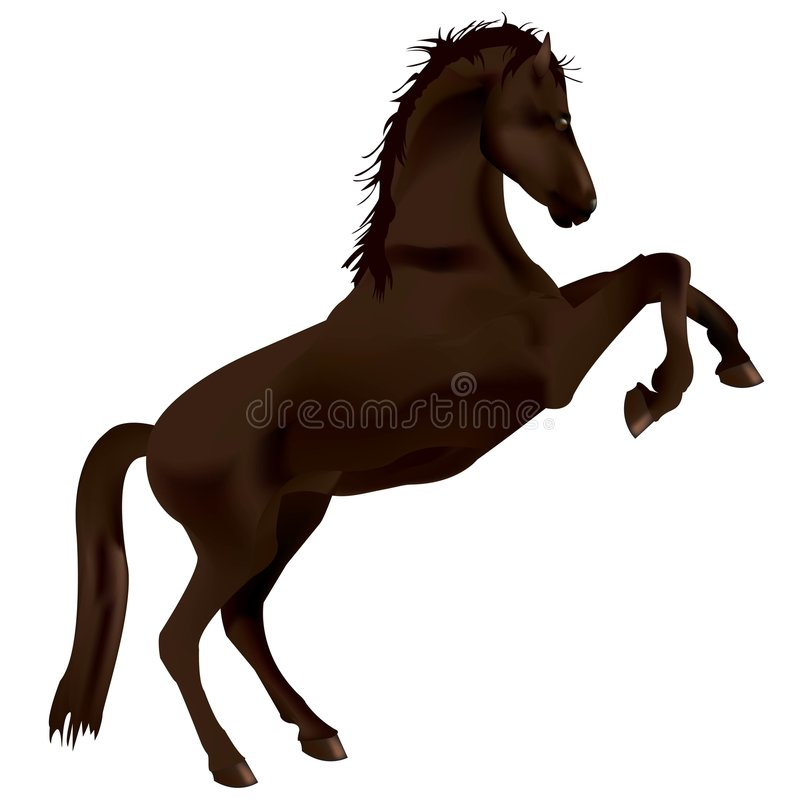 Download Horse stock vector. Illustration of object, clip, creative - 6530119