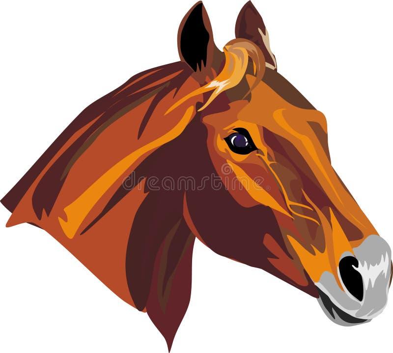 Horse stock illustration
