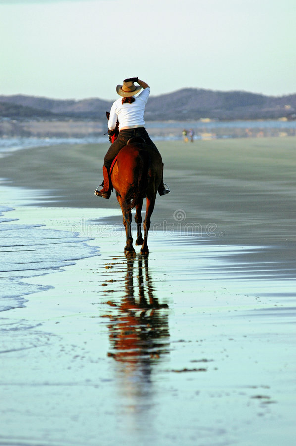 Free Horse And Rider On Beach Royalty Free Stock Image - 1971186