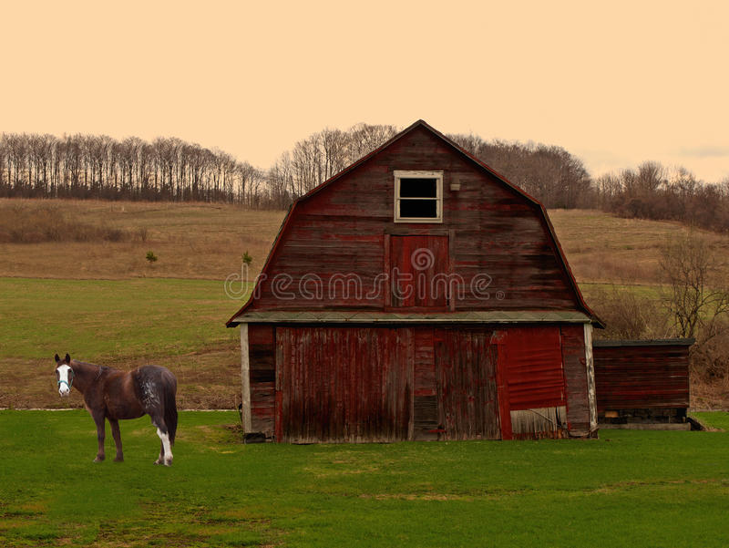 Horse And Barn At Sunrise Royalty Free Stock Photo