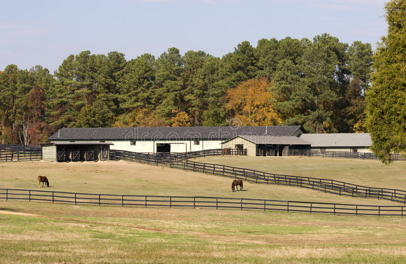Horse Barns stock images