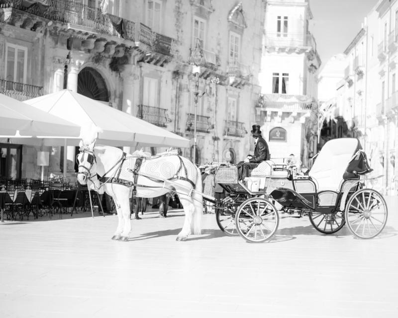 Horse and a beautiful old carriage in old town stock photo