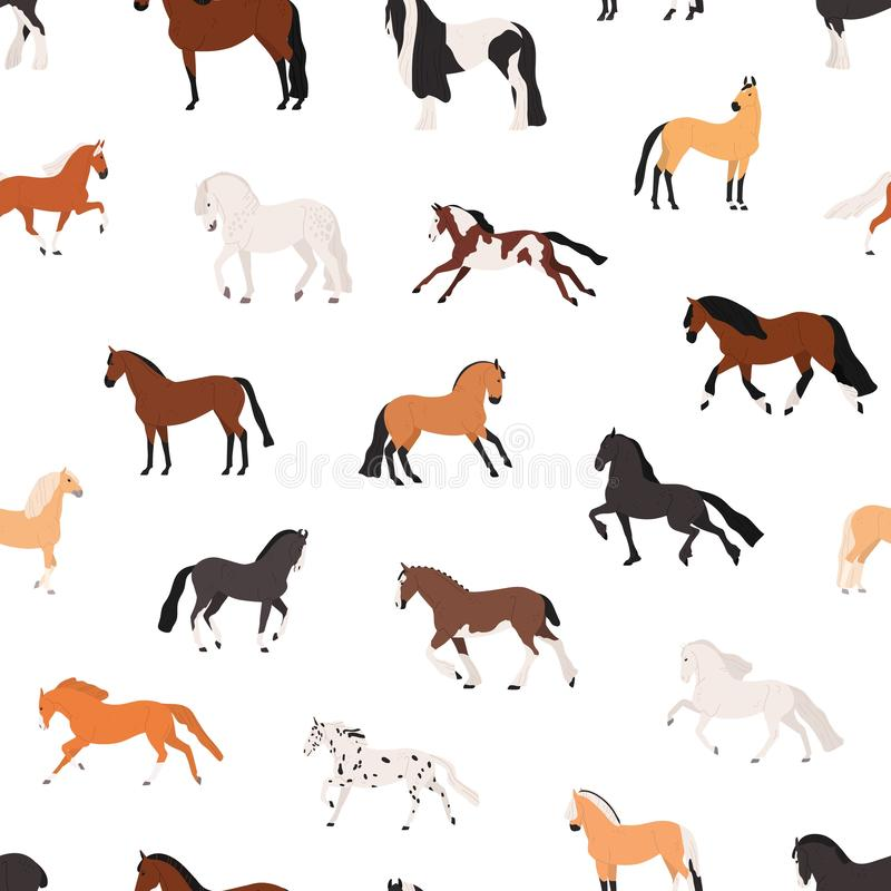 Free Horse Breeding Flat Vector Seamless Pattern. Purebreed Mares And Stallions Decorative Texture. Thoroughbred Racehorses Royalty Free Stock Photography - 166876927