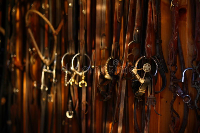 Download Horse bridles stock photo. Image of tack, equine, tools - 20888490