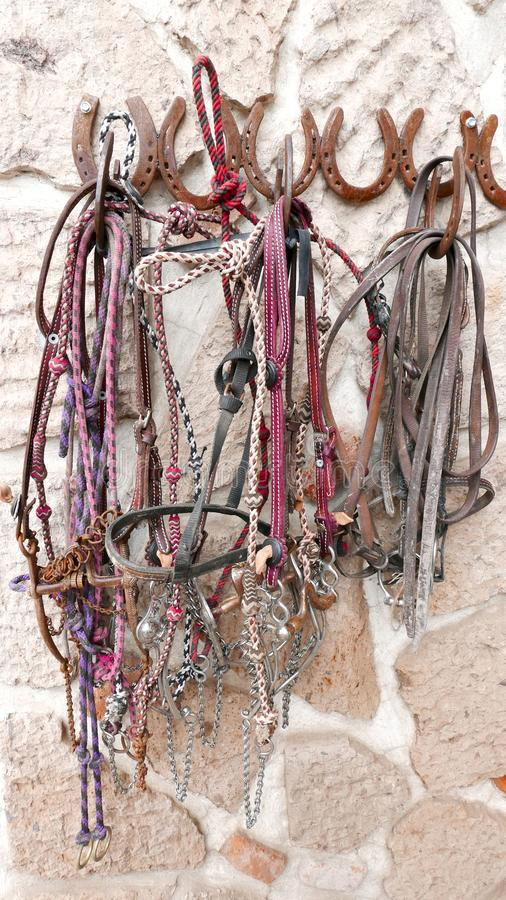 Horse Bridles and Headstalls on a wall stock images