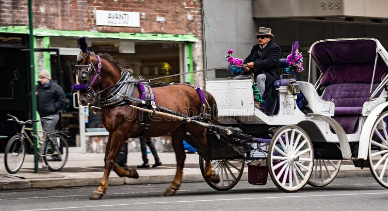 Horse and buggy drive down New York street without any passenger. New York, Feb 15, 2018 - Horse and buggy drive down New York street without any passengers stock photo