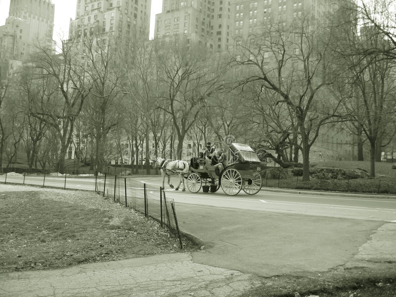 Horse and buggy ride, central park nyc stock image