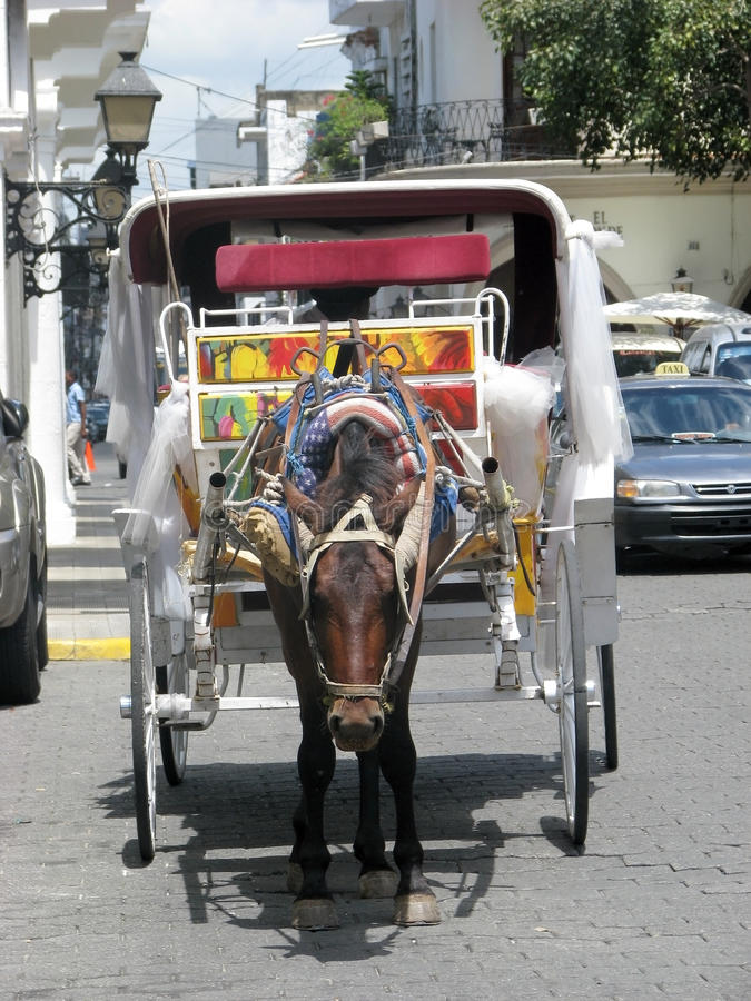 Download Horse and carriage editorial stock photo. Image of carriage - 24046898