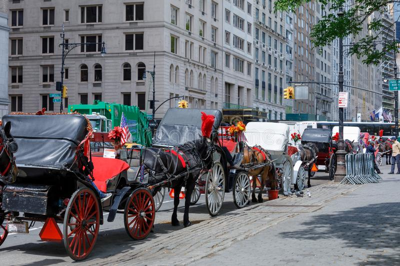 Horse and carriage at Central Park, NYC stock image